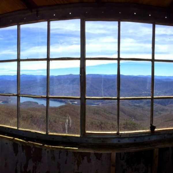 The view from Shuckstack Fire Tower.